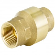 "Check Valve 2"" BSP Female"