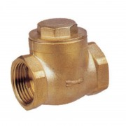 "Swing Check Valve 21/2"" BSP Female"